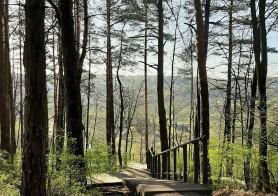 Best places to enjoy nature in Vilnius!