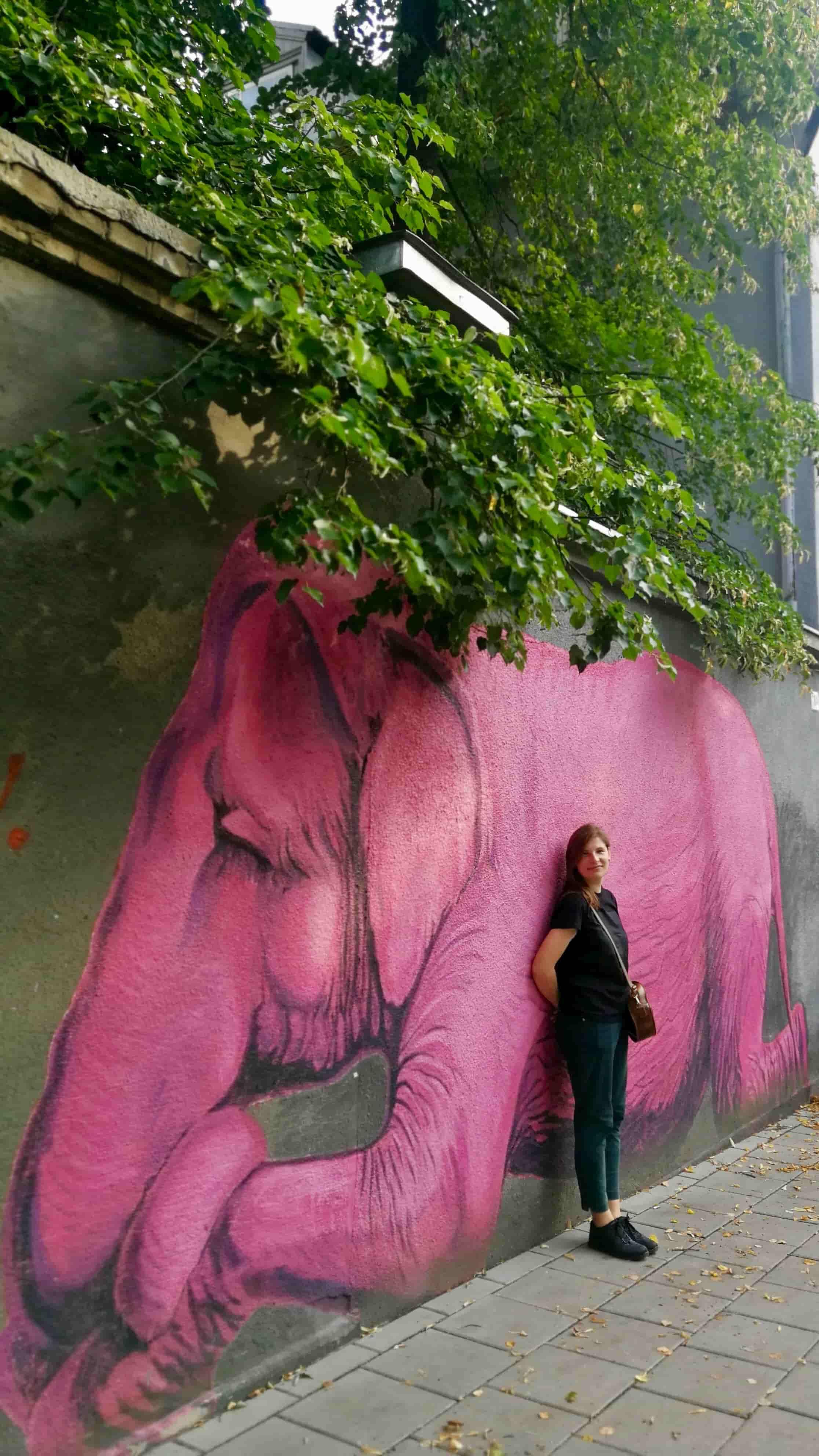 kaunas' pink elephant