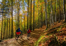 Would you like to test some of the best Mountain biking trails in Slovenia?
